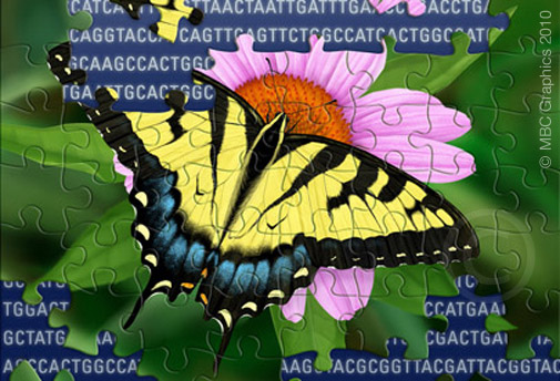 Using Genetics to Understand the Natural World illustration